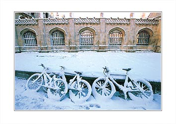 LCCC43-C-0304-Bicycles-on-Kings-Parade